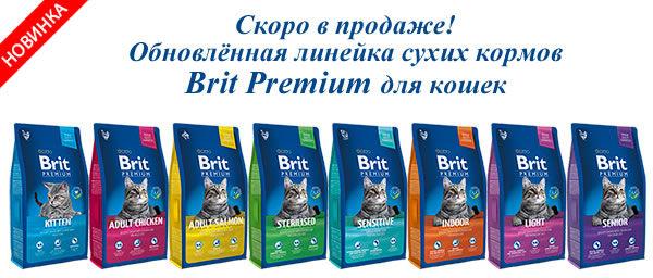 brit_premium_cat_new.jpg