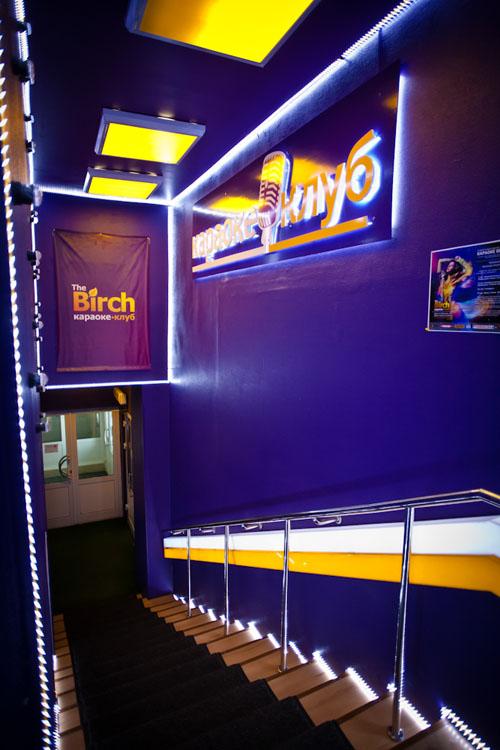 birch4.jpg