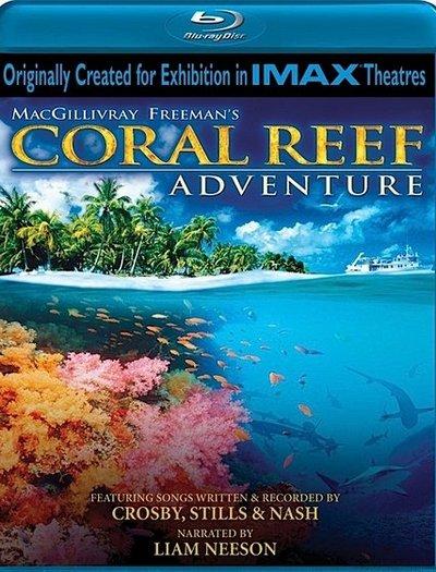 Coral%20reef%20adventure.jpg