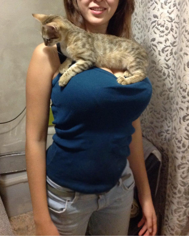Прикольные фото кошек с девушками